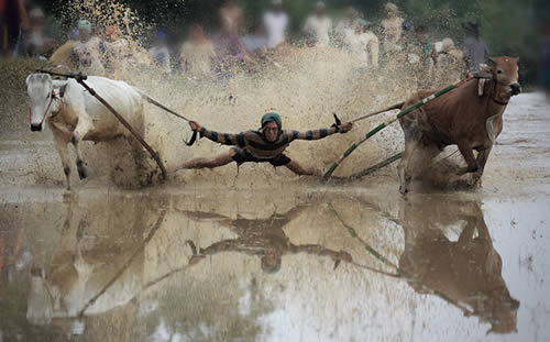 perfectly timed action photography