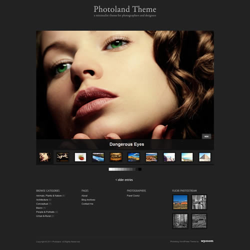 free premium wordpress themes